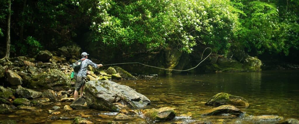 Fly Fishing and Outdoors in Haywood County