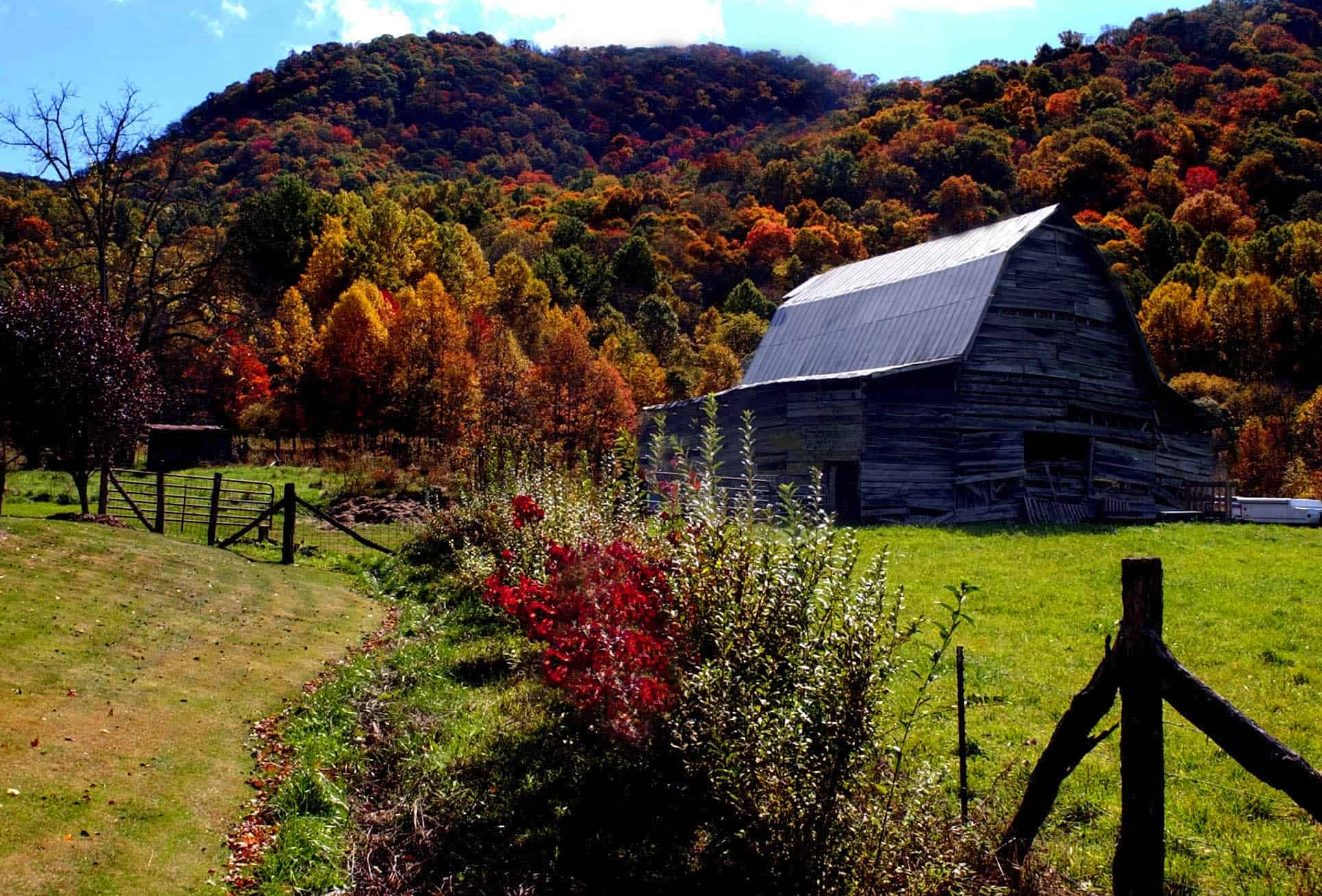 Seven Sensational Spots To See The Fall Leaves Visit Now