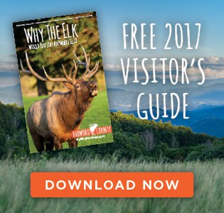 2017 Visitor's Guide