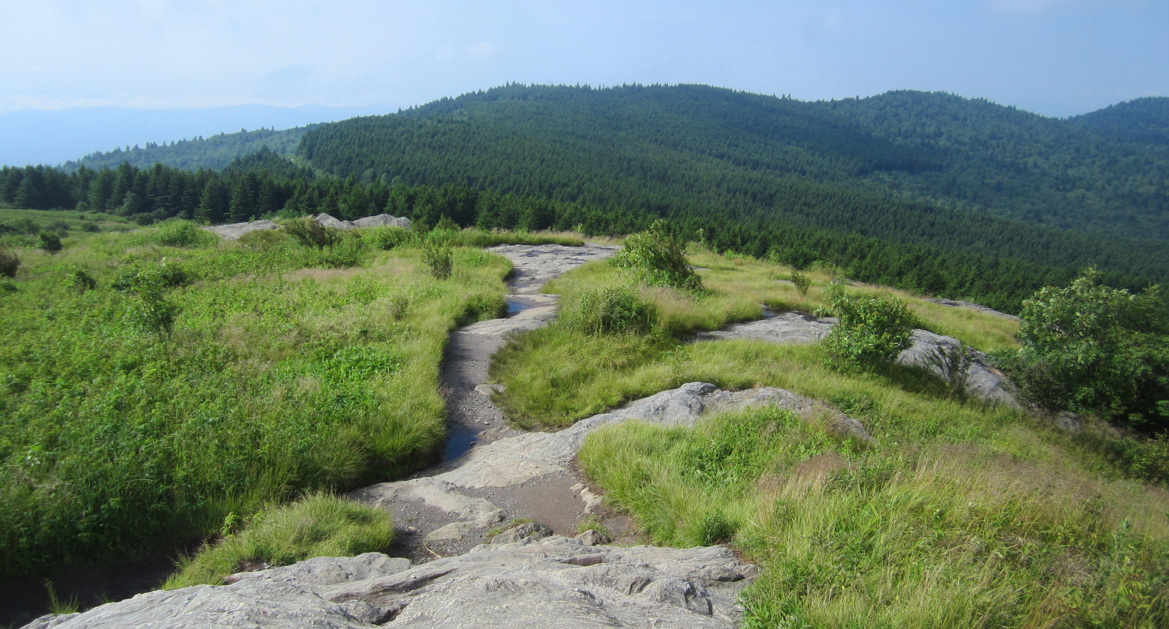 Art Loeb Trail at Black Balsam