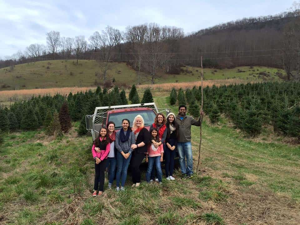 Dutch Cove Christmas Tree Farm | Visit NC Smokies