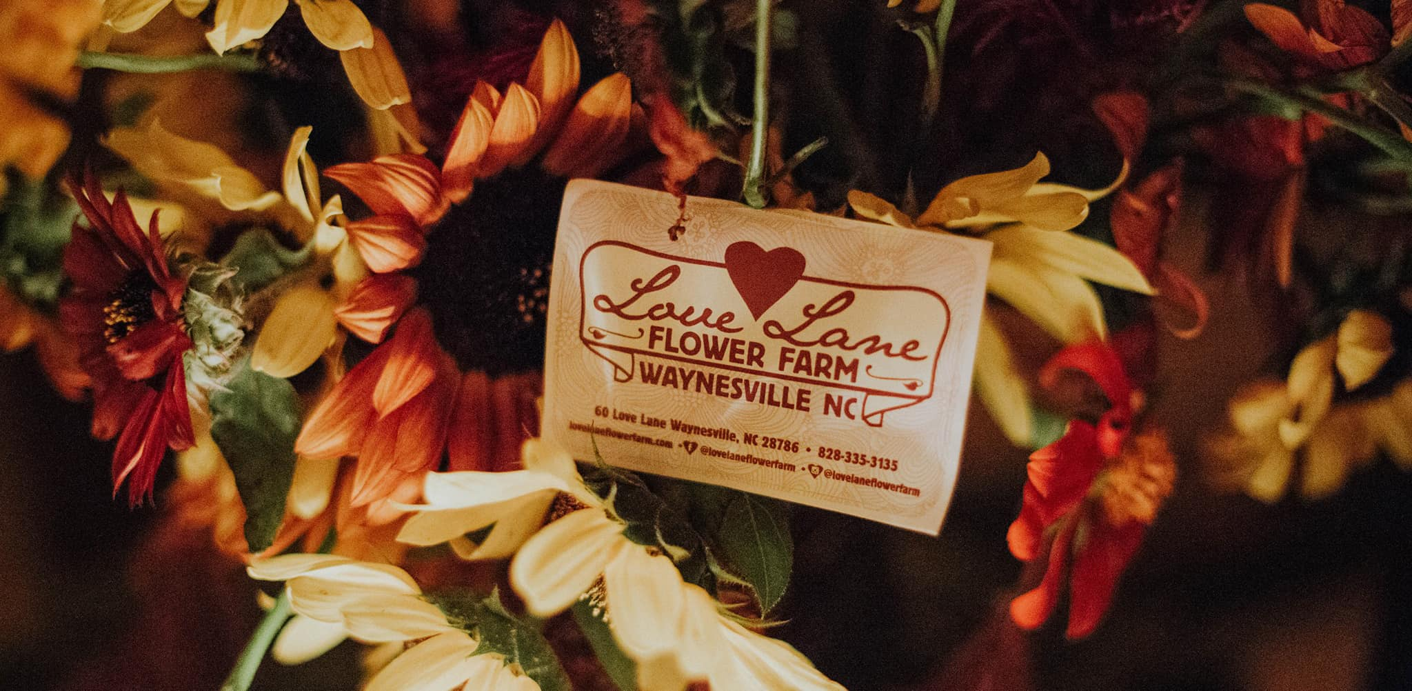 Love Lane Flower Farm