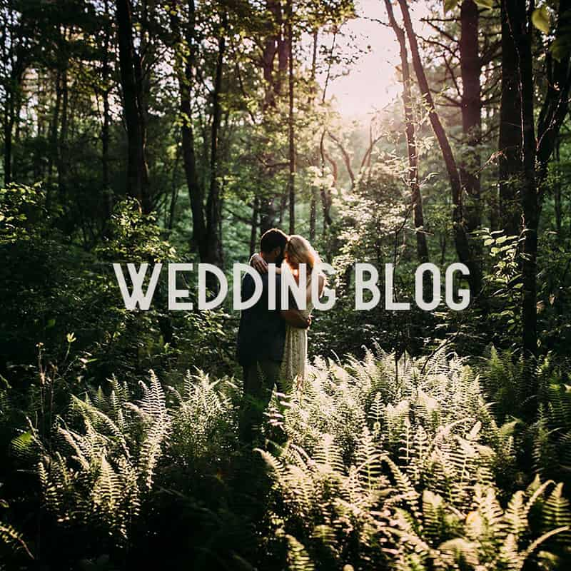 smoky-mountain-wedding-blogs
