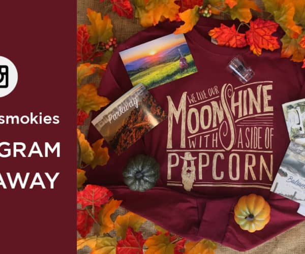 November Instagram Giveaway @visitncsmokies
