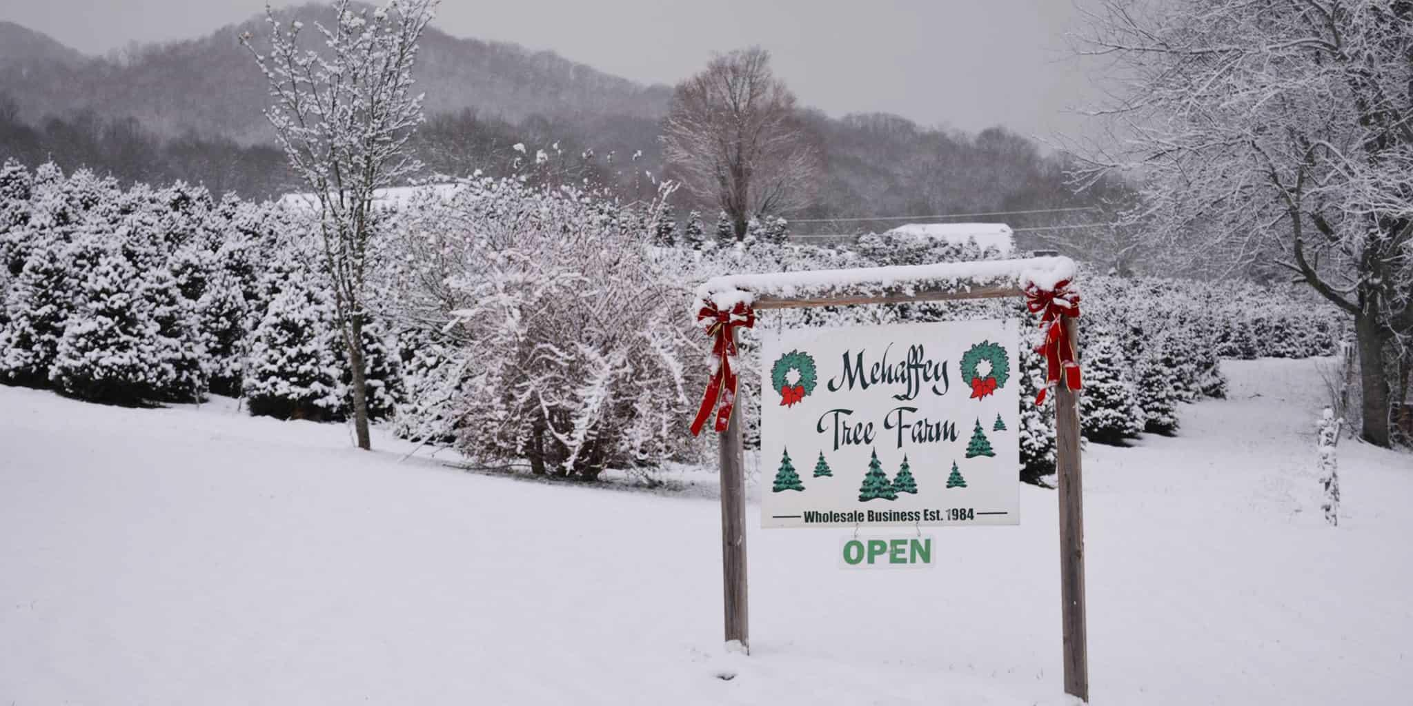 Mehaffey Christmas Tree Farm
