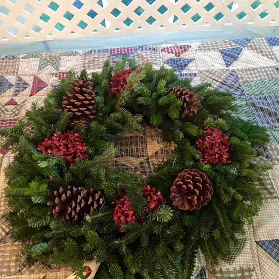 boyd mountain christmas tree farm opening - Christmas Tree Farm Asheville Nc