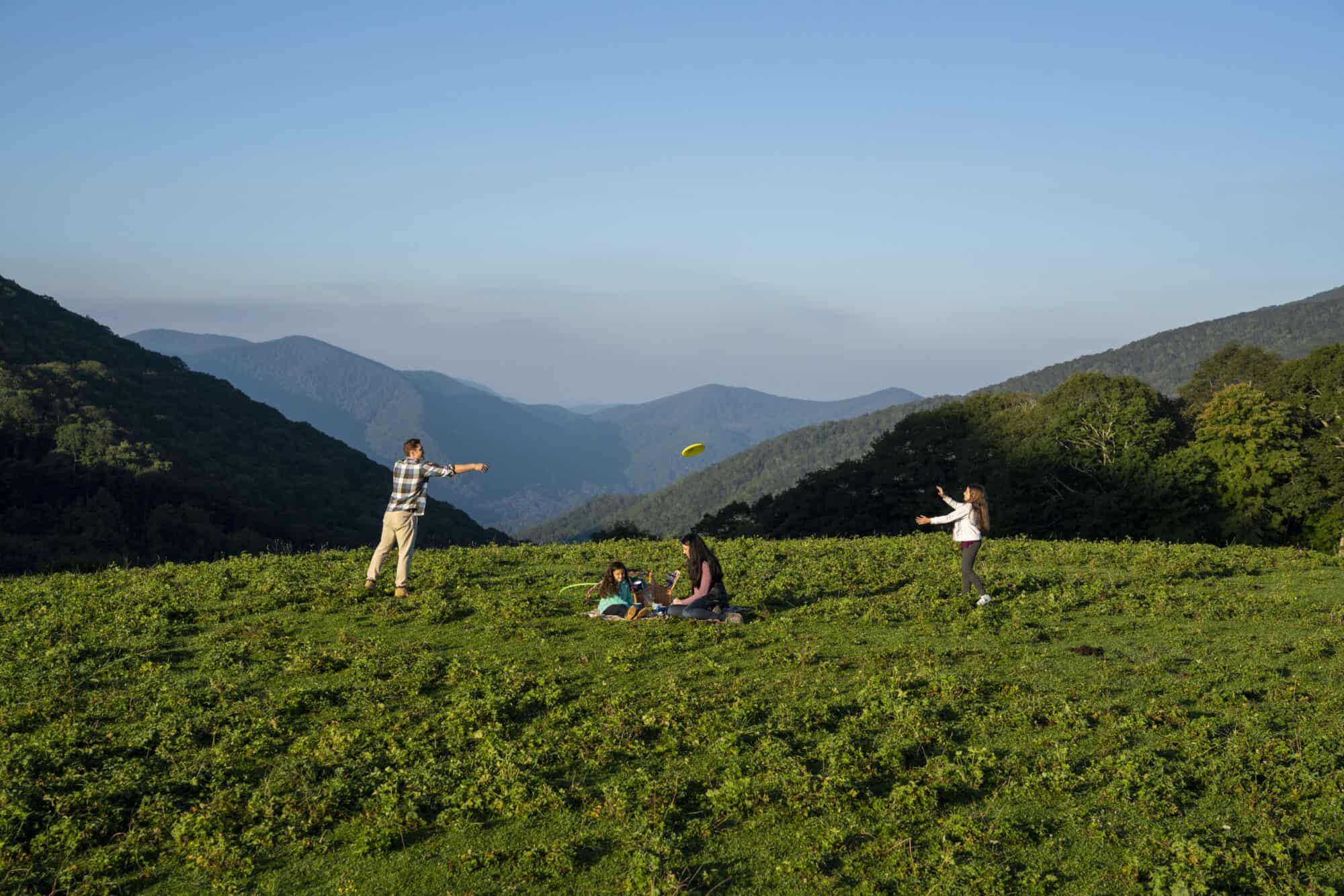 A young family having a picnic atop Cataloochee Meadow.