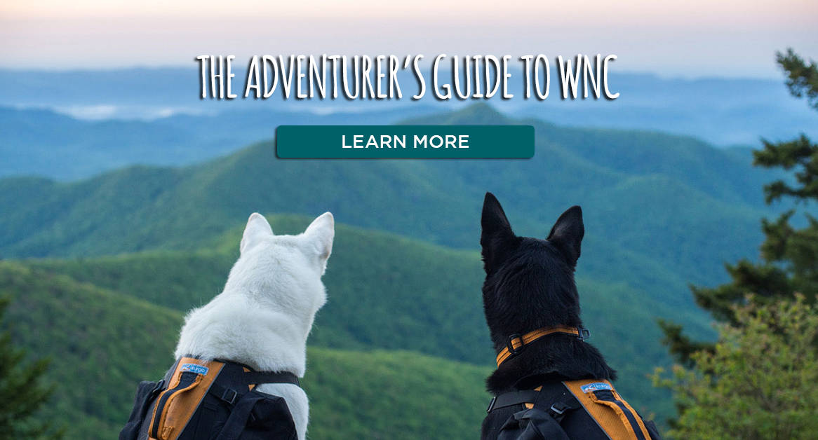 The Adventurer's Guide to WNC Link to Blog