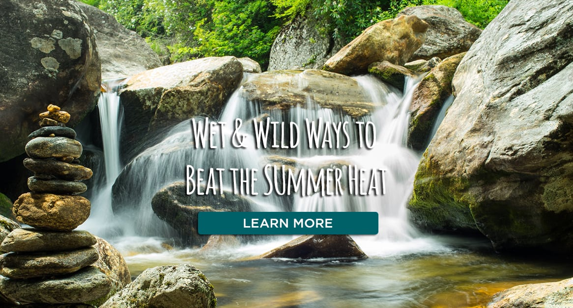 Wet and Wild Ways to Beat the Summer Heat Blog Link