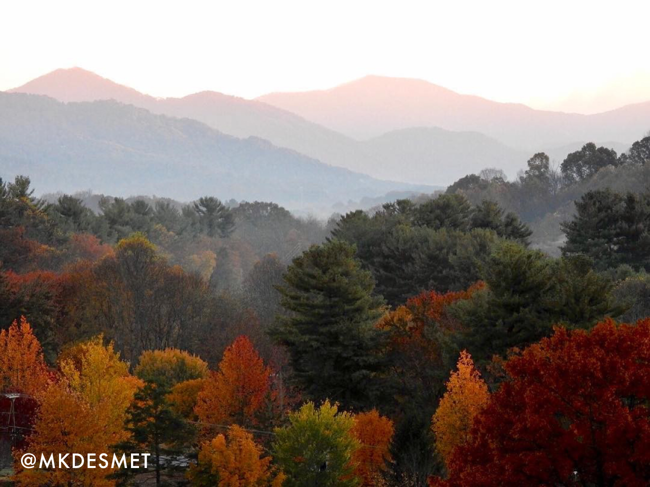 Fall color in Waynesville, NC.