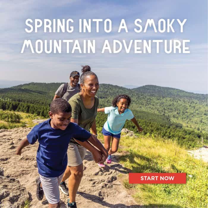 Spring into a Smoky Mountain Adventure - Start Now