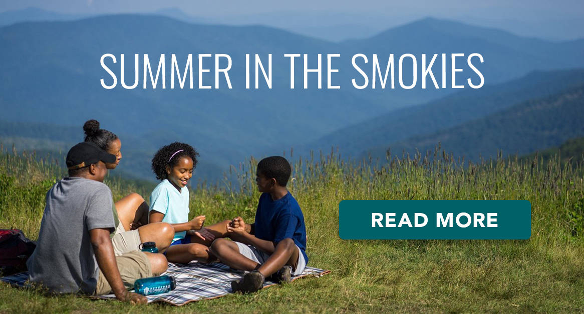 Summer in the NC Smokies
