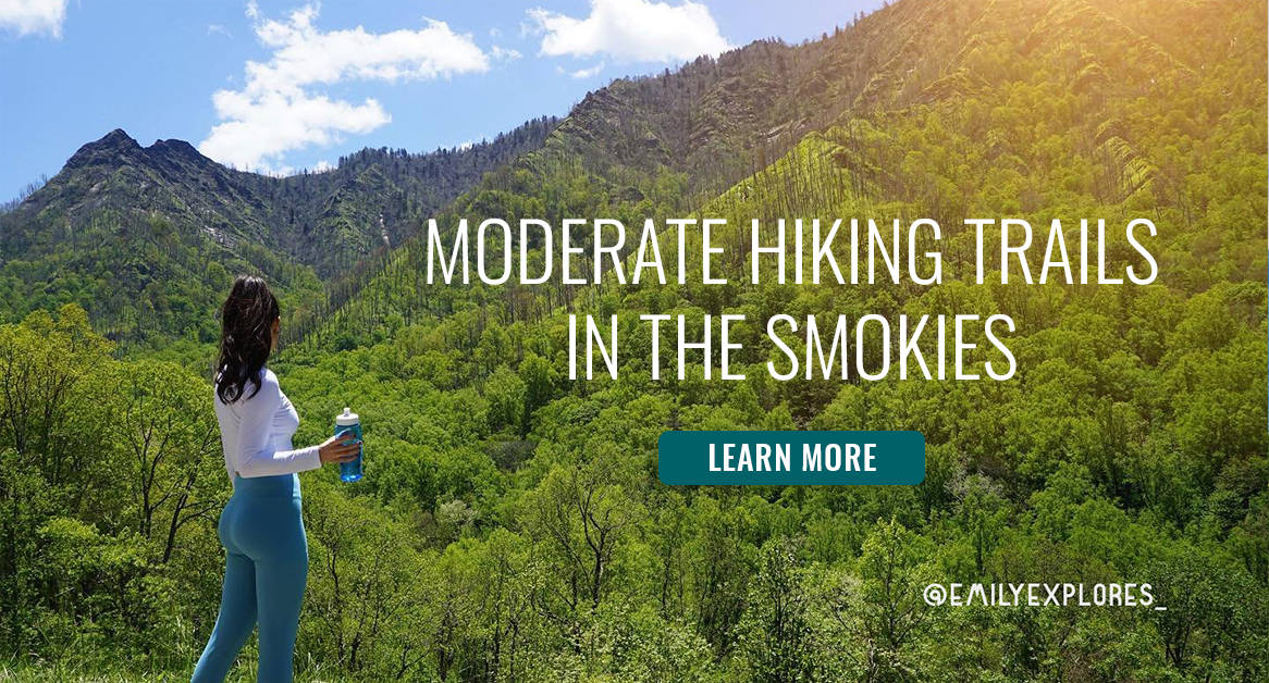 Moderate Hiking Trails in the Smokies Blog