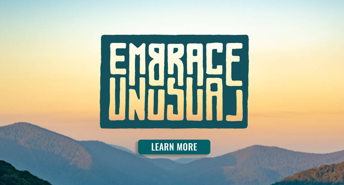 How to Embrace Unusual