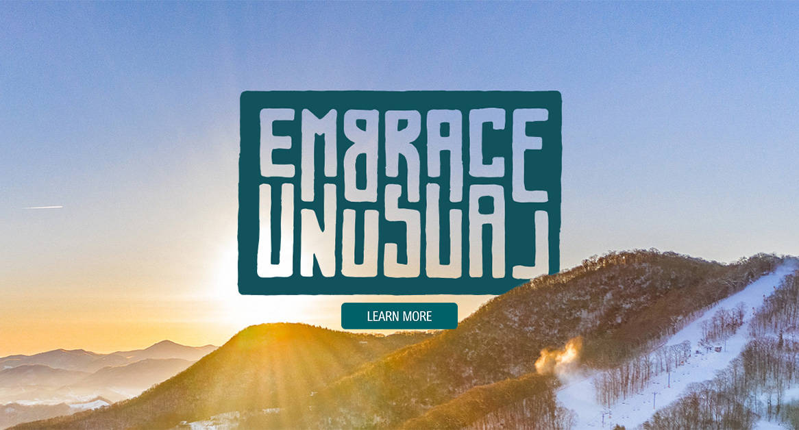 Embrace Unusual Learn More